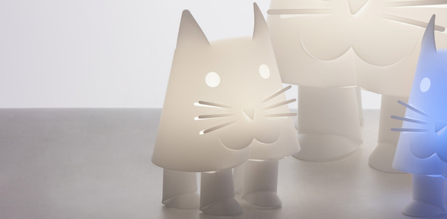 gatto / MINI bright